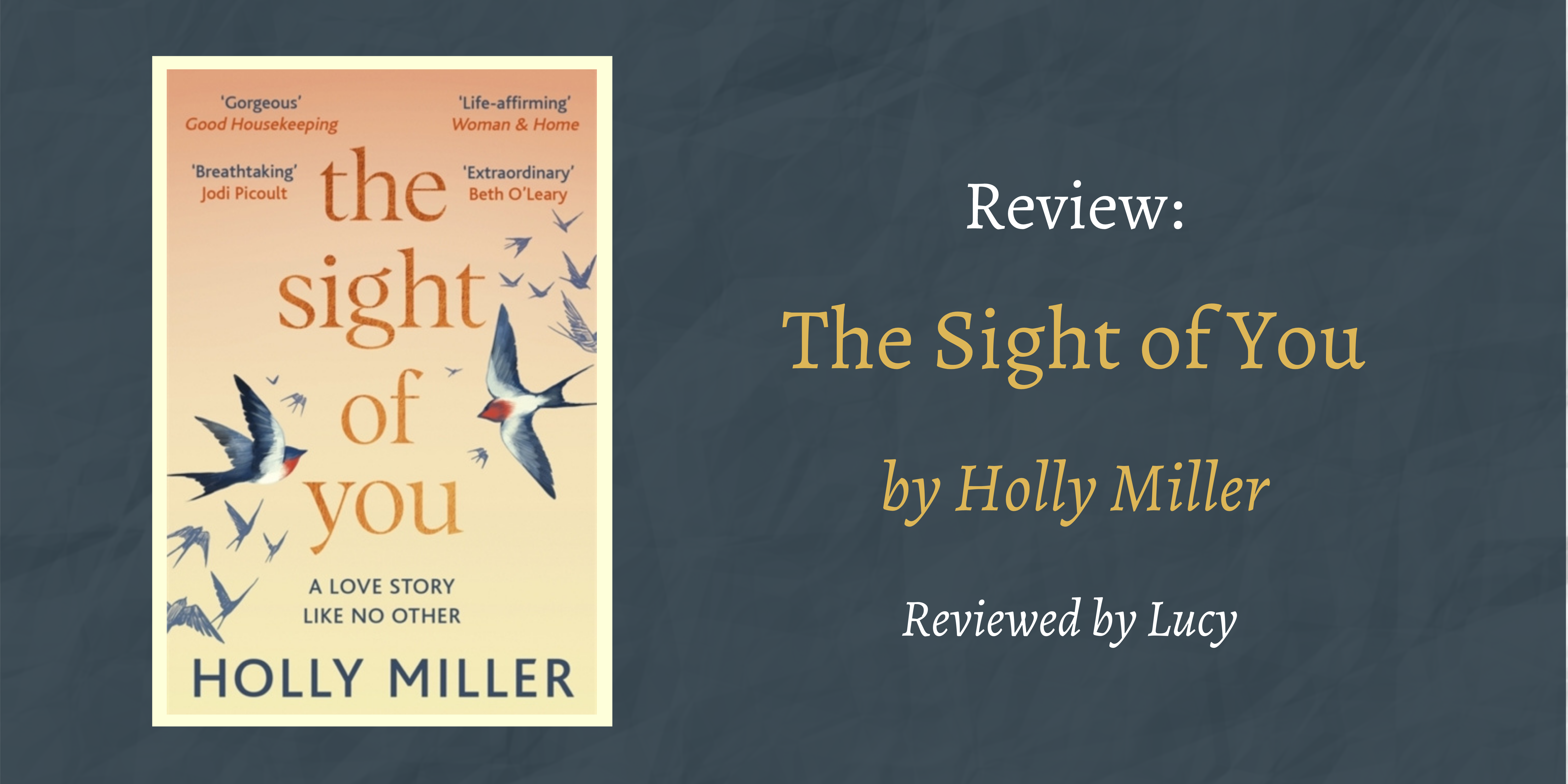 Book Review The Sight of You